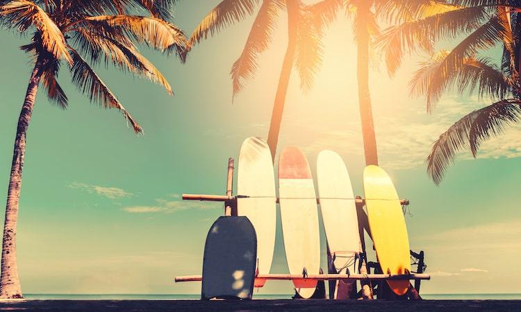 ハワイ旅行でおすすめの海外旅行保険を比較